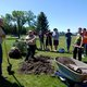 Nathaniel O'Driscoll happily chops into the ground to plant trees for his Eagle Scout project at the new Sandy Cemetery extension on Sandy Pride Day. (Keyra Kristoffersen/City Journals)