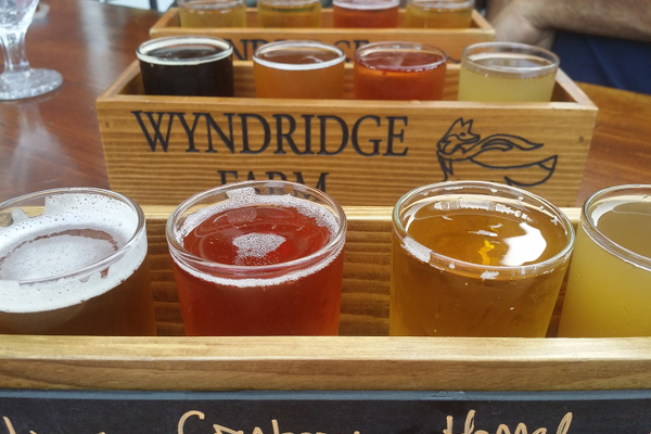 A flight of ciders at Wyndridge Farm