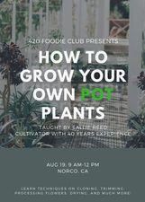 Medium grow 20plants 20class 20pic