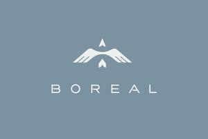 Medium 1 boreal case logo