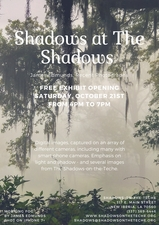 Medium shadows 20at 20the 20shadows 20exhibit flyer