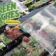 Green Acres Nursery  Supply - 09282017 0327PM