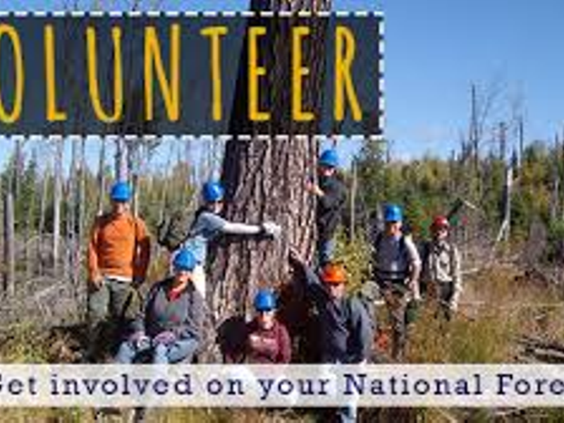 Volunteers Make a Difference on Superior National Forest