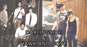 Medium darlingside and  hawk and dove for website