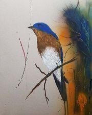 Medium bluebird