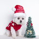 The Gift Guide 30 Fab Finds for All - Nov 22 2017 1259PM