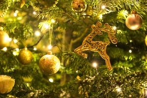 Medium christmas 1849263 1920