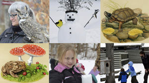 Winter Wildlife Celebration  For Children of All Ages - start Jan 13 2018 1000AM