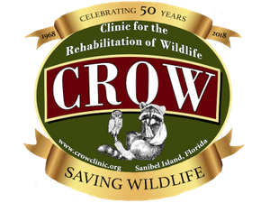 CROW Annual Meeting - start Mar 28 2018 0400PM