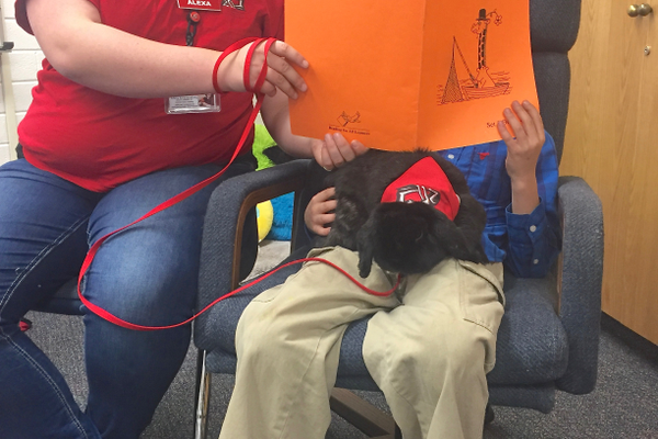 Therapy bunny Gunkey, with literacy mentor Alexa Kruckenberg, listen to a Parkside reader. (Julie Slama/City Journals)