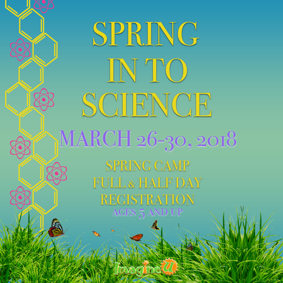 Springscience 20ad