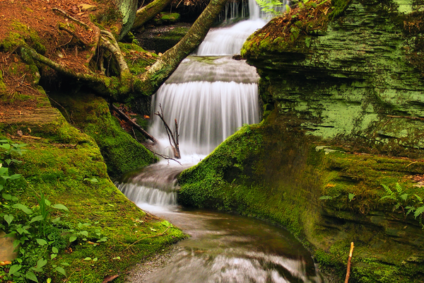 Small waterfall on Beech Bottom Run, within the Susquehannock Trail System. Nicholas A. Tonelli.