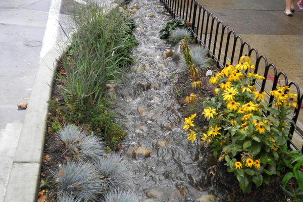Curb cut-out inlet to rain garden on west side of Allen Street
