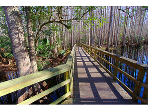 5 Easy Hikes in the Bonita Springs  Estero Area - May 14 2018 1203PM