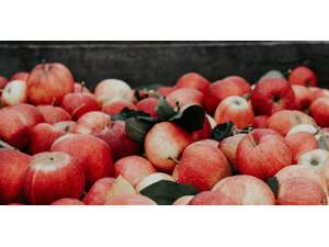 Simply in Season Apples Apples Apples - start Sep 25 2018 0530PM