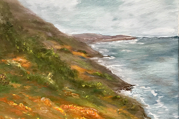 Poppies of Big Sur