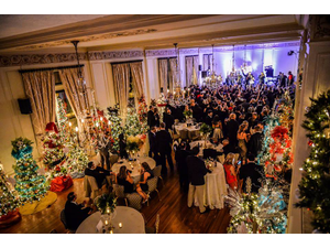 14th Annual Festival of Trees - start Nov 30 2018 0730PM