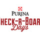 Thumb_check-r-board-days---logos-02
