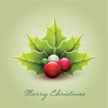 Medium merry christmas