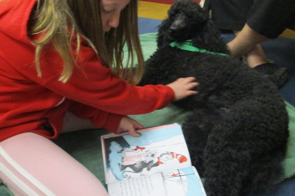 This young reader couldn't decide whether to pat Lexi or turn pages.