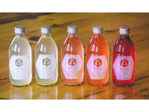 Bright Ideas APIS Kombucha In harmony with the bees