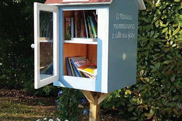 Photo courtesy  Little Free Library