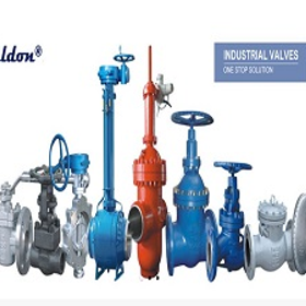 Weldonvalves