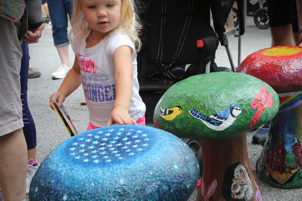 Mushroom Festival visitor Lydia takes a look at the painted mushroom entries on Saturday.