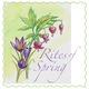 Thumb_rites-of-spring-logo-2
