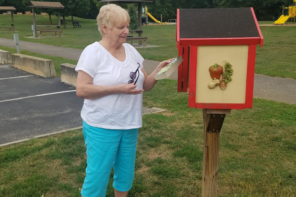 A patron checks out the selection of books available in the Little Free Library in John C. Rudy Park in York.