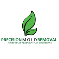 Precision mold removal logo1