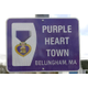 Municipal Spotlight Color Bellingham Purple As in Purple Heart