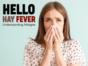 Hello Hay Fever Understanding Allergies