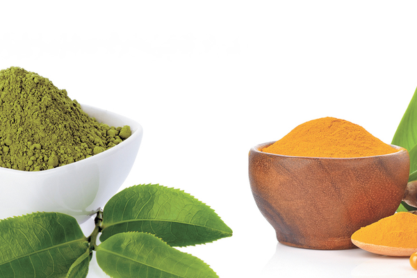 Bowls of green tea extract and curcumin