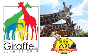 Medium world giraffe day 2014